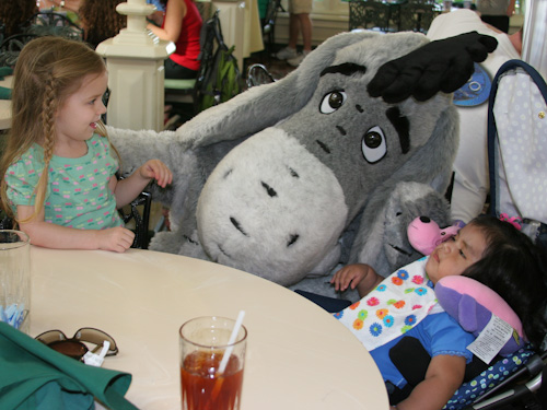 Lauren, Eeyore and Carmen. Tigger bounced right up to say hi!